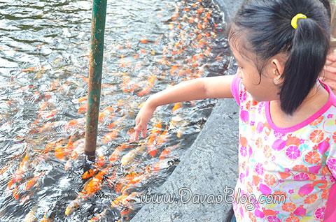 feed-the-fish-Davao-Crocodile-Park-Davao-City-Tourist-Spots