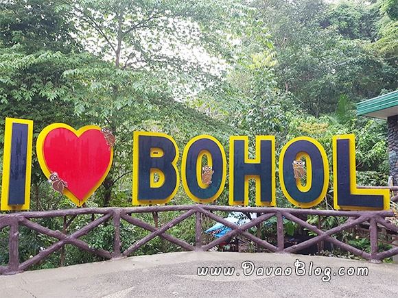 Bohol-Tourist-Spot-Tarsier-sanctuary-in-Bohol-Tarsiers